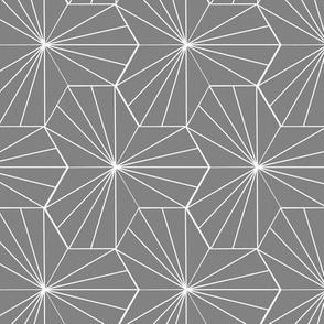 Gray Hex Lines
