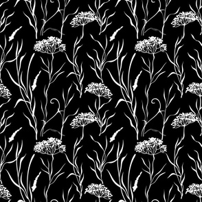 Queen Anne's Lace pattern in black and white