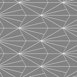 gray hex lines 2