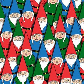 lots of gnomes