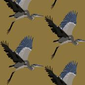 Harold the Heron in ochre