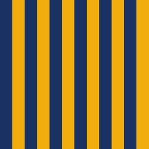 Blue & Yellow Stripes