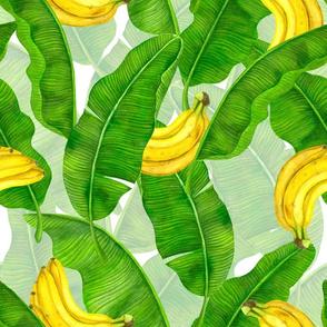 Bananas and leaves watercolor design