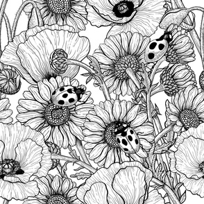 The meadow black and white