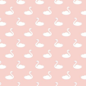 Swans - Pink Background - small