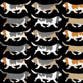 Trotting Basset hound border - black