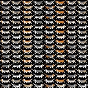 Small Trotting Basset hound border - black