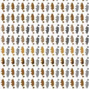 Small Trotting full color Border Collie border vertical - white