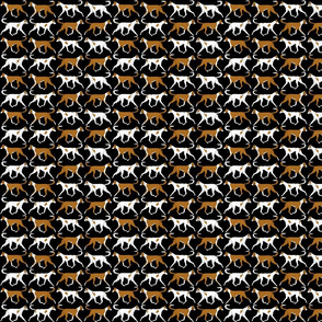 Small Trotting Ibizan hound border - black