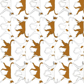 Trotting Ibizan hound border vertical - white