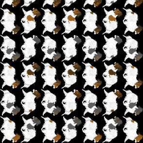 Trotting Papillon border vertical - black