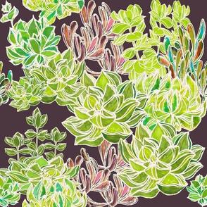 Modern Desert - Succulents on Plum Background