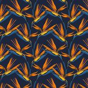 Bird of Paradise- (2/3 scale)