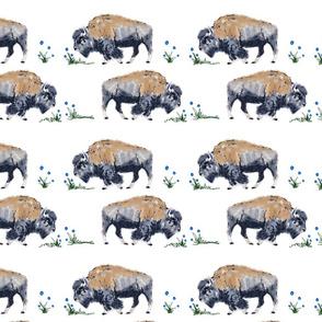 Roaming bison swaddle print