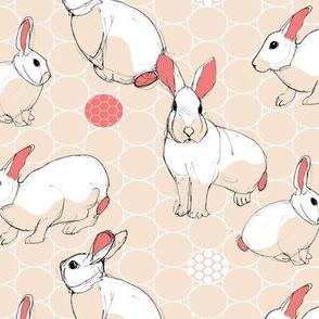 sketch bunny warm