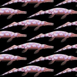 Cymbospondylus in negative