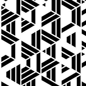 Black and white Hexagon Geometric