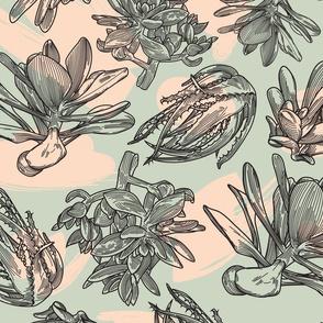 Retro 50s Succulent Pattern