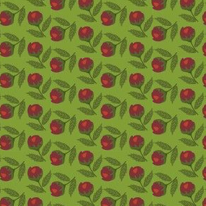 Red Buds on Green Background