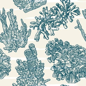 Navy Nautical Striped Coral Pattern