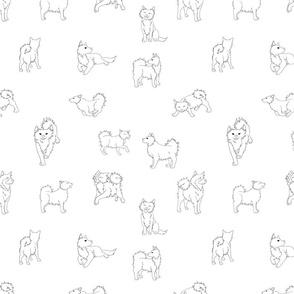 ISD-whiteblack_01-01