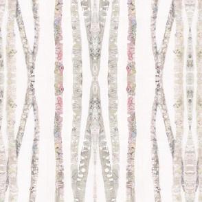 Birch trees plus
