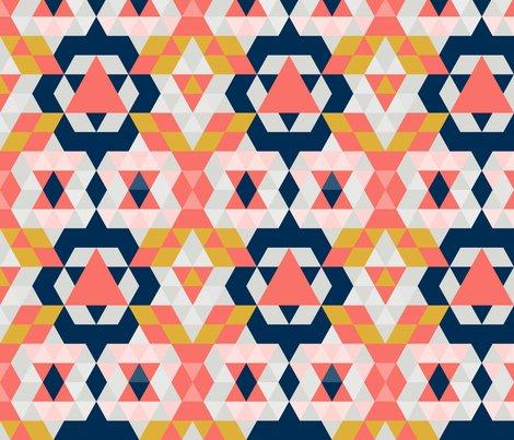 Rmoroccan_coral_limited_color_palette_shop_preview