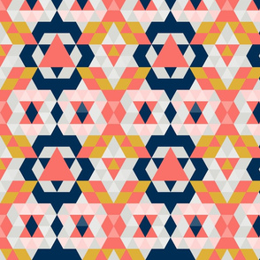 Moroccan Coral Limited Color Palette