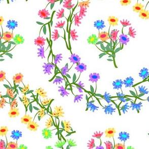 Rainbow Daisy Wreaths on White