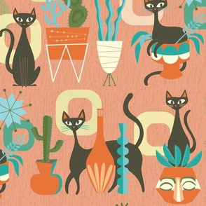 modern cats and plants in coral