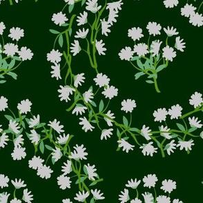 White Daisy Wreaths on Darkest Green