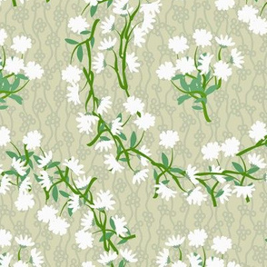 White Daisy Wreaths on Light Green with Bubble and Vine