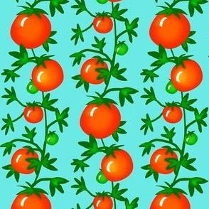 Vine Ripe  -Tomatoes