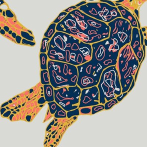 Turtles in Feb 2019 Limited Color Palettev3
