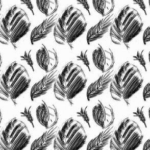 Black and white dry ink - leaves and feathers