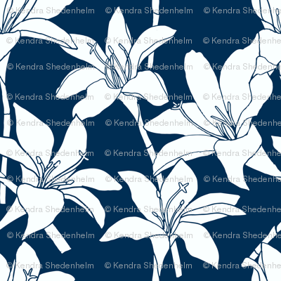 Amaryllis Floral Line Drawing, White on Midnight Blue