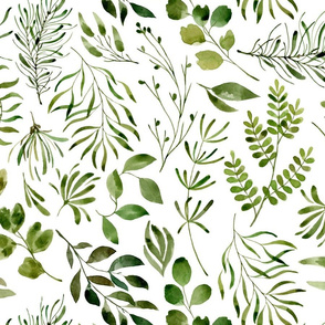 Green leaves botanical print on plain white background