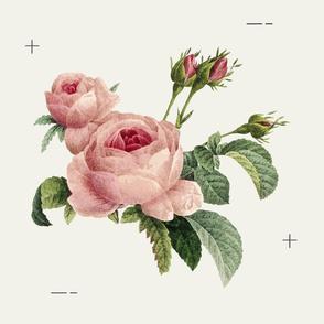 Romantic Blooms Mod Cream Large
