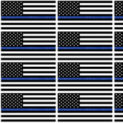 Thin Blue Line flag - Police - Back the Blue LAD19