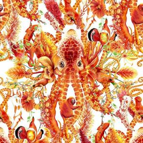 Tangerine Octopus Floral