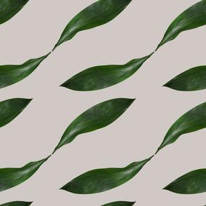 Retro Leaf Collage on Plain Background
