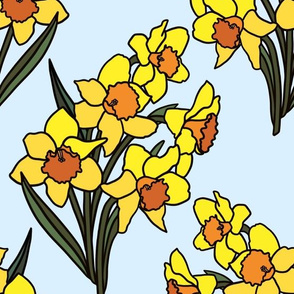 Daffodils on baby blue
