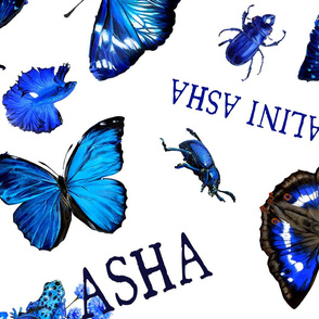 naliniasha logo blue print