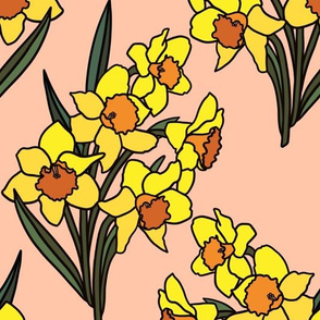 Daffodils on blush