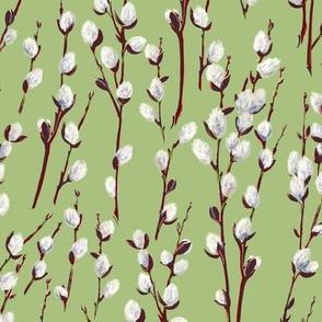 Pussywillow   Celery #A9C07E