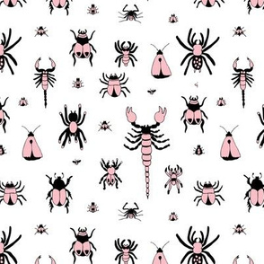 Little bugs and insects scorpion spiders and jungle beatle flies and mot pink girls