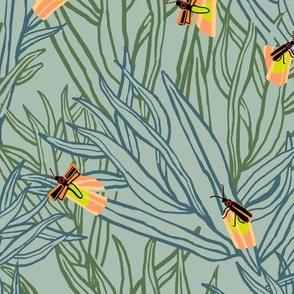 firefly salix_6