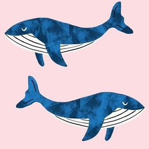 whales on blush