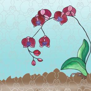 orchid design Phalaenopsis