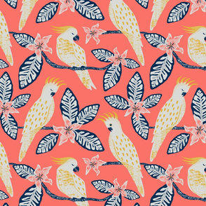 Cockatoo - solid coral background